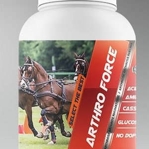 Arthro Force