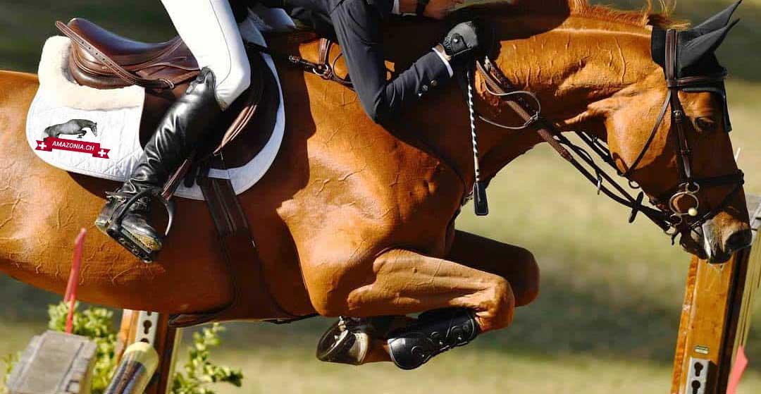 Amazonia horse supplements